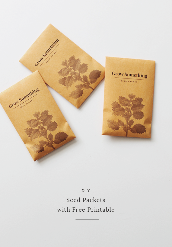 graphic regarding Blank Seed Packets Printable identified as Blank Seed Packet Envelopes Residence design and style Plans
