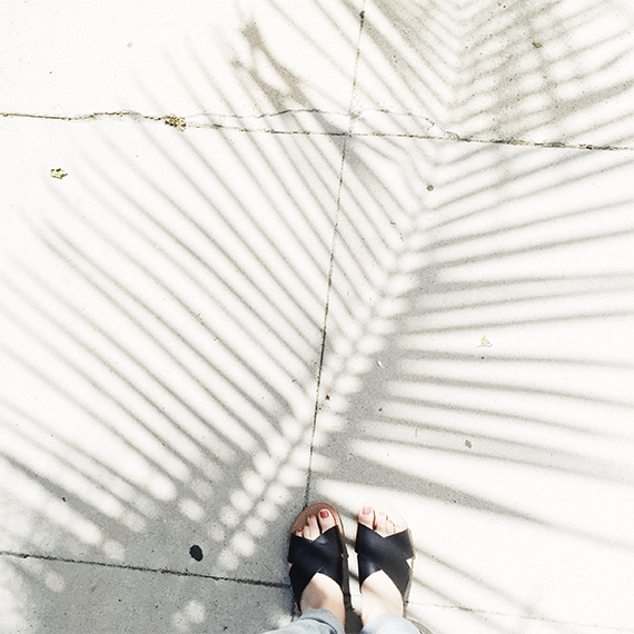 palm shadows @almostmakesperfect